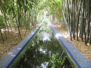 Majorelle garden stream