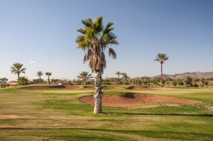 Bunkers, Marrakech Golf Course