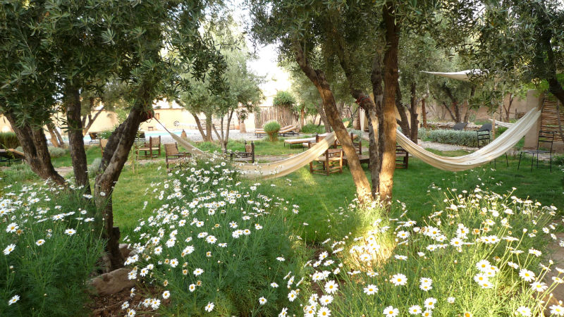 Garden Hammok