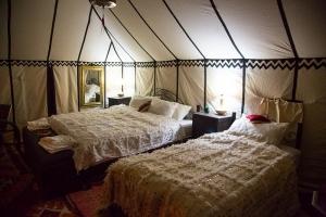 Luxury Desert Camp 3