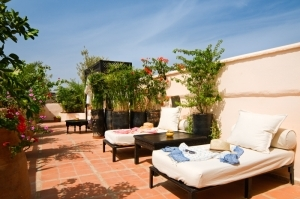 Terrace Loungers