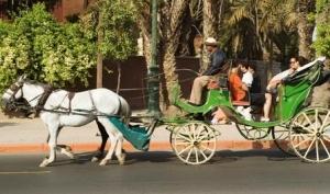 Caleche Ride
