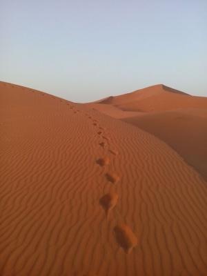 Footsteps in the Desert