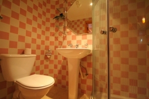 1st Terrace Room Bathroom