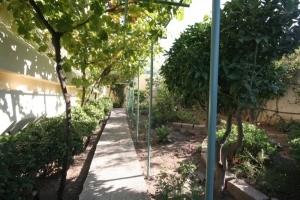 Fruit Gardens