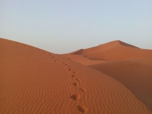 Camel Trek accross Erg Chigaga